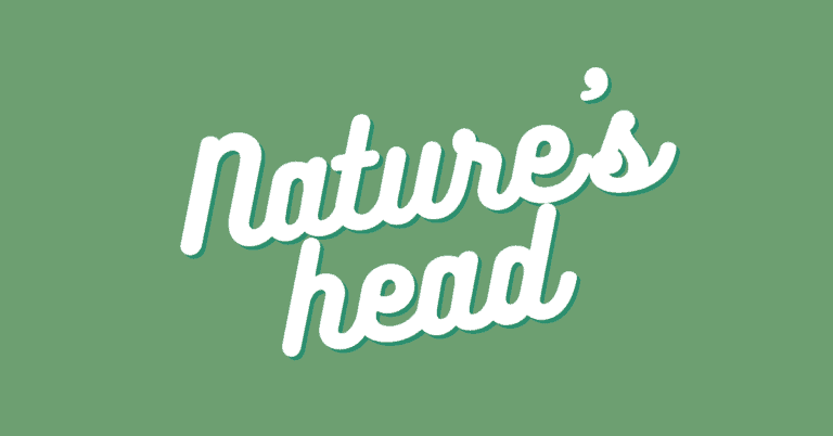 Nature's Head Composting Toilet Review