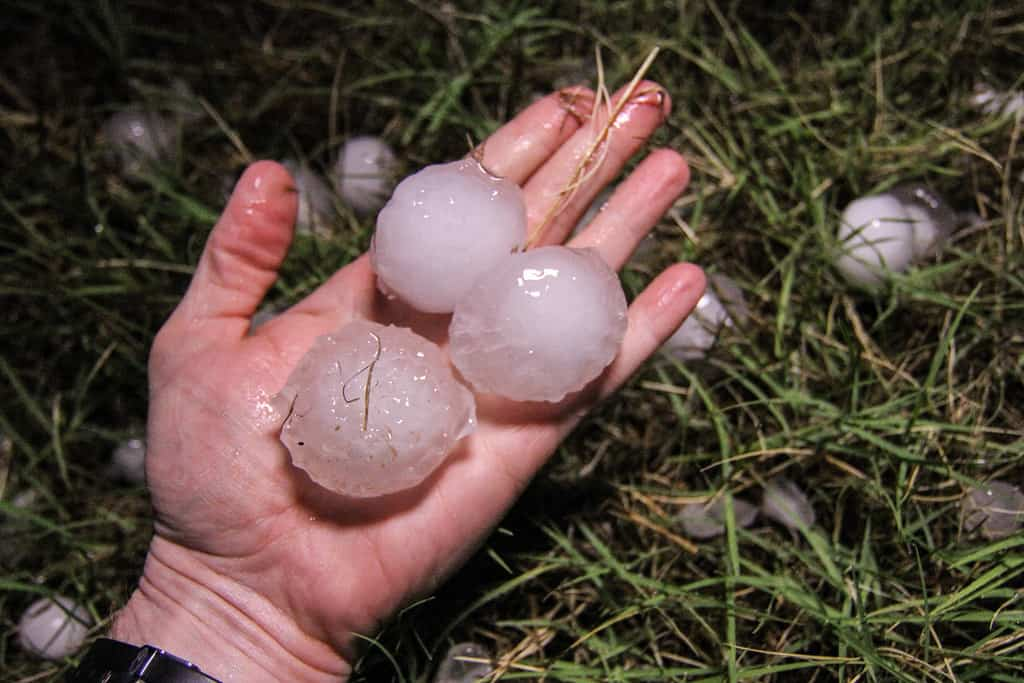 Photo of large hail stones in a hand