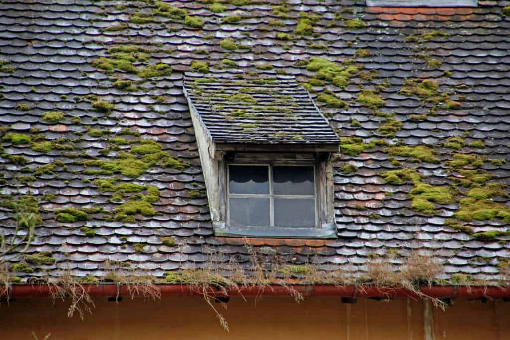A photo of an old and damaged roof