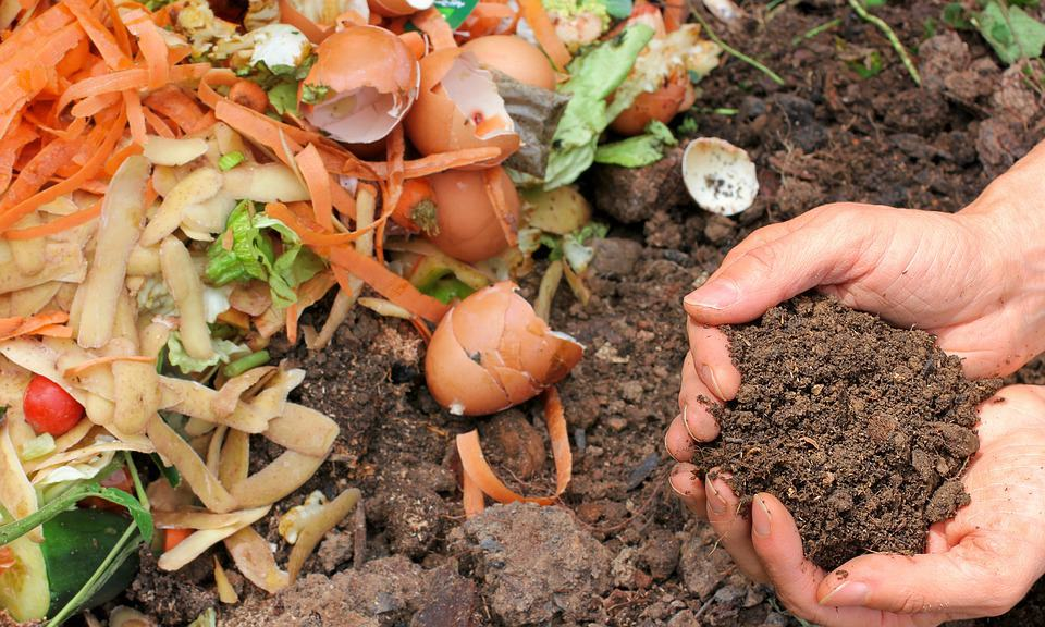 Pros and cons of composting